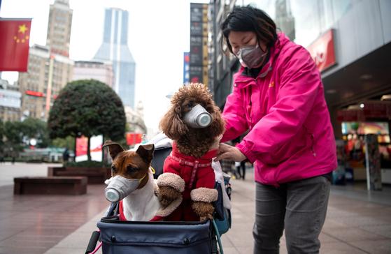 19일 중국 상하이에서 한 여성이 자신과 반려동물 개에게 마스크를 씌운 채 거리를 걸어가고 있다.AFP=연합뉴스]