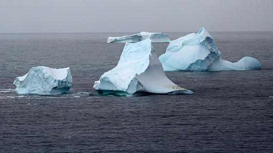 빙하 조각이 떨어져나와 물 위에 떠있는 모습. 빙하 위에 검은 점처럼 보이는 부분에 펭귄들이 모여 있다. [사진 그린피스]