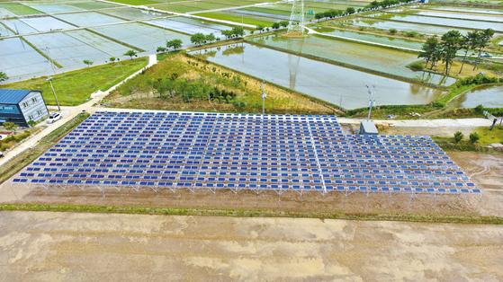한국남동발전은 주민수용성을 높인 새 모델의 재생에너지사업으로 신재생에너지를 확대하고 있다. 사진은 영농형 태양광발전. [사진 한국남동발전]