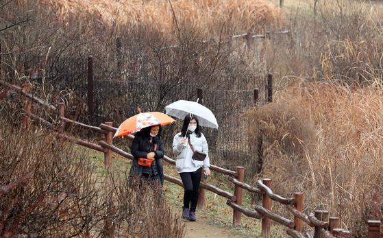 인천시 남동구 인천대공원을 찾은 시민들이 우산을 쓰고 봄의 정취를 느끼고 있다. [뉴시스]