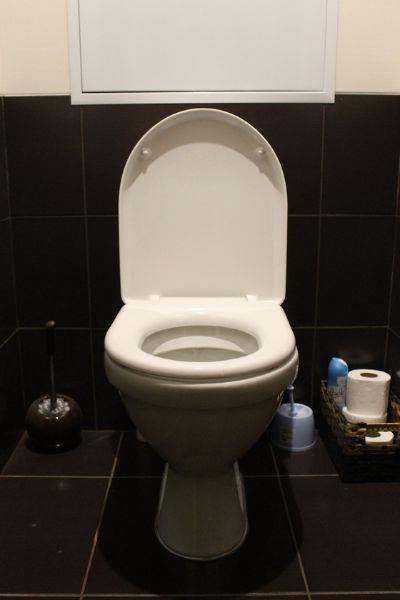 화장실 둘인 집에서 하나인 집으로 이사할 때 걱정한 것이 아버지와 함께 화장실을 쓰는 것이었다. [사진 pxhere]
