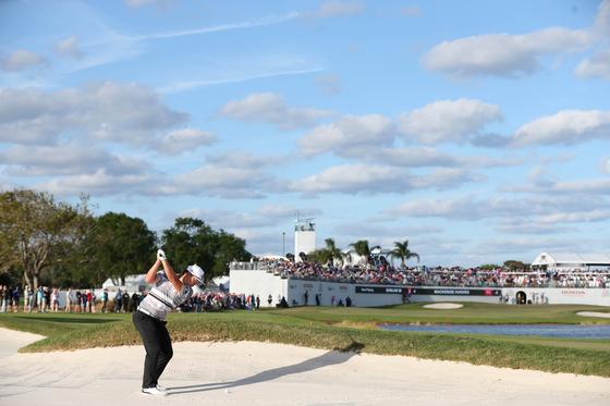 지난 2일 열린 PGA 투어 혼다 클래식 최종 라운드 16번 홀에서 샷을 시도하는 임성재의 모습. [AFP=연합뉴스]
