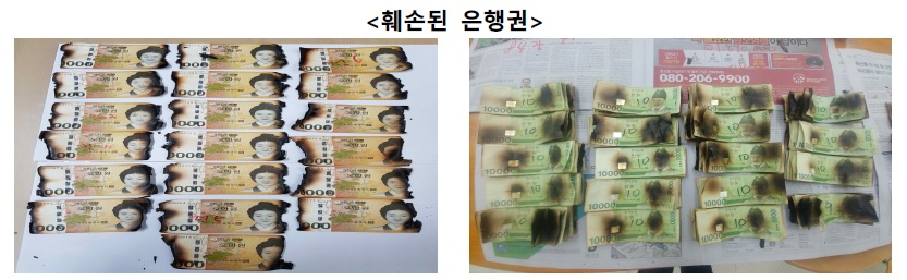 한국은행은 신종코로나 감염증(코로나19)이 옮을까 봐 지폐를 전자레인지에 넣고 돌리는 행위는 삼가 달라고 11일 밝혔다. 한국은행=연합뉴스.