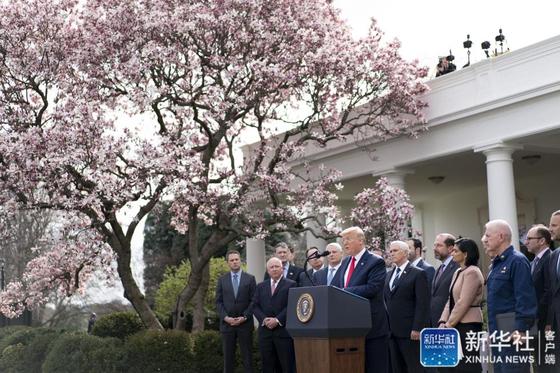 도널드 트럼프 미국 대통령이 13일(현지시간) 미국 내 신종 코로나 상황이 심각해지자 백악관에서 '국가비상사태'를 선언하고 있다. [중국 신화망 캡처]