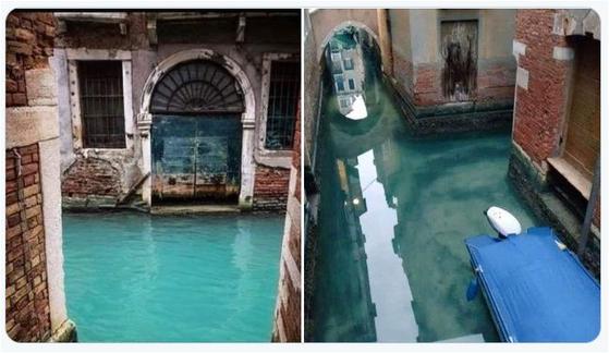 맑아진 모습의 이탈리아 베네치아 운하의 물. 코로나 19의 영향으로 관광객이 줄면서 운하의 수질과 함께 대기질도 개선되고 있는 것으로 나타났다. [트위터]