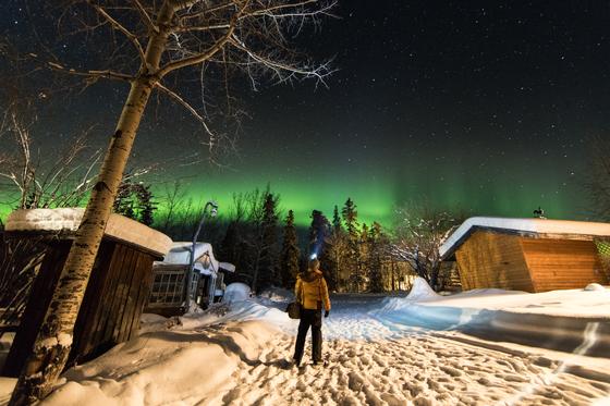 지난 2월 캐나다 화이트호스에서 오로라를 만났다. 통나무집에 머물다가 오후 11시 방문을 열고 나갔더니 초록빛 띠 같은 오로라가 하늘에 걸려 있었다.