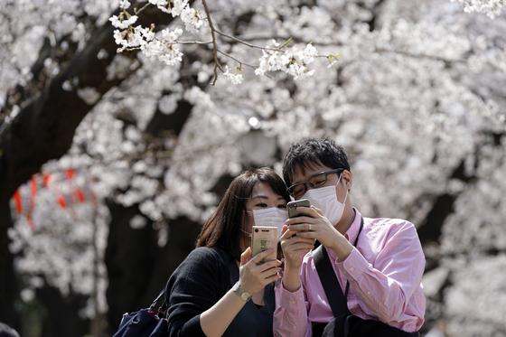 일본 전역에서 신종 코로나바이러스 감염증이 확산되고 있는 가운데 22일 도쿄 우에노공원에서 한 연인이 마스크를 쓴 채 벚꽃놀이를 하고 있다. [EPA=연합뉴스]