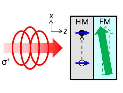[그림] 원형 편광 빛(빨간색 화살표)이 중금속(HM)에 흡수되어 전자의 스핀(파란색 화살표)를 만들고, 전자의 스핀이 자성체 (FM)에 흡수되어 자기 방향(녹색 화살표)을 움직인다.