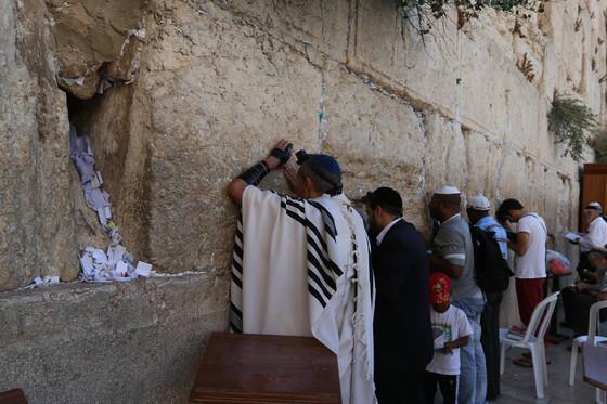 동예루살렘 통곡의 벽 앞에서 신도들이 종교 의식을 행하고 있다. [중앙포토]