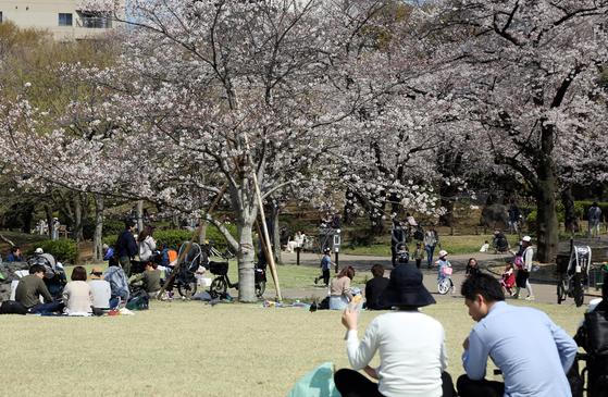 26일 일본 도쿄도(東京都) 스미다(墨田)구의 한 공원에 시민들이 활짝 핀 벚꽃을 만끽하고 있다. 고이케 유리코 일본 도쿄도 지사는 도쿄에서 신종 코로나바이러스 감염증(코로나19) 확진자가 폭발적으로 증가할 가능성이 있다고 전날 우려를 표명하고 외출 자제를 당부했다. 연합뉴스