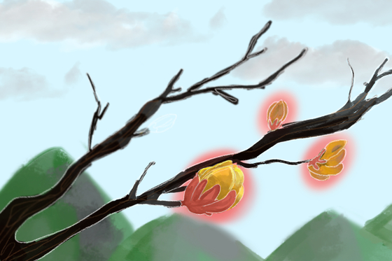 깊은 산 속 잎사귀 하나 없는 민둥 가지에 여기저기 움이 트고 있다. 혹독한 겨울을 견디고 다가올 봄을 이들은 이미 준비해온 것이다. 엄동설한 속에서도 봄을 준비하는 놀라운 생존력이다. [일러스트 강경남]