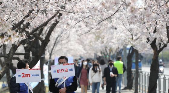 6일 점심시간 여의나루역 인근에서 회사원들이 벚꽃길을 걷고 있다. 영등포구청 직원들이 마스크 착용과 2m 거리두기 팻말을 들고 코로나19 예방 캠페인을 하고있다. 연합뉴스