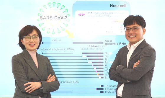 신종 코로나바이러스 감염증의 원인인 사스코로나바이러스-2의 RNA전사체를 세계 최초로 분석한 김빛내리(왼쪽)ㆍ장혜식 서울대 생명과학부 교수팀. 이번 연구는 계산생물학자인 장 교수의 기여가 결정적이었다. 장 교수는 제11회 홍진기 창조인상 과학부문 수상자이기도 하다. 변선구 기자