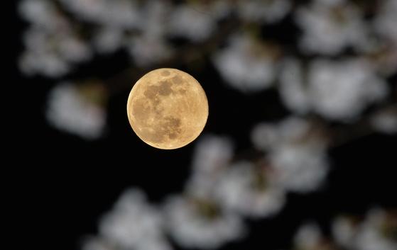 """""""어젯밤 달 봤나요""""슈퍼문은 7일이었지만, 가장 둥근달은 8일"""