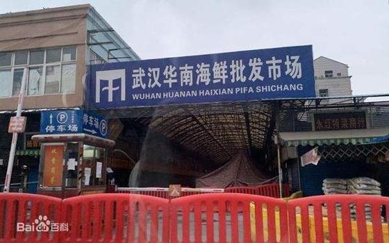 중국 우한의 화난수산시장에서 초기에 다수의 신종 코로나바이러스 감염증 환자가 발생하며 질병은 중국 전역으로 퍼졌다. 중국 바이두 캡처