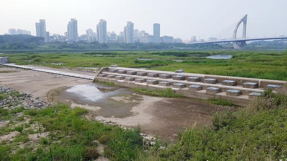 보가 개방된 세종보 일대 금강 모습. 강에 물이 없어 황량한 분위기다. 프리랜서 김성태