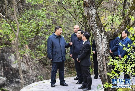 시진핑 중국 국가주석이 지난 20일 산시성 친링산맥의 자연보호구를 찾아 생태환경의 중요성을 강조하고 있다. [중국 신화망 캡처]