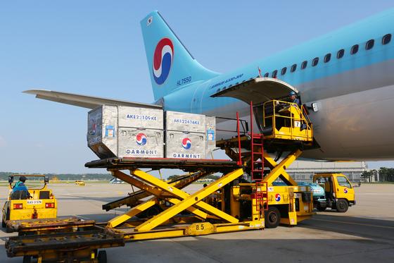 대한항공이 베트남 노선에 투입한 A330 여객기에 화물을 투입하고 있다. [사진 대한항공]
