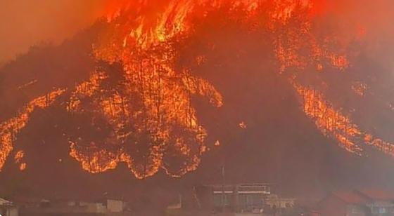 25일 오후 경북 안동시 풍천면 인금리에서 발생한 산불이 산 아래 농촌마을까지 확산되고 있다. 뉴스1