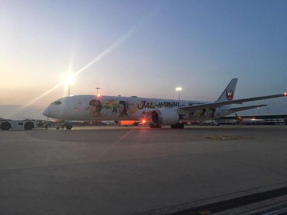 급성 백혈병에 걸린 한국 어린이가 4일(현지시간) 탑승한 인도 델리 국제공항의 일본항공(JAL) 특별기 모습. [JAL 제공=연합뉴스]