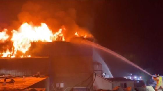 4일 제주 서귀포시 대포동에 있는 한 양돈장에서 불이 나 2000마리가 넘는 돼지가 불에 타 죽고, 약 10억원의 재산 피해를 냈다. 소방 당국은 9시간 가까이 진화 작업을 벌였다. 사진은 화재 현장. [사진 서귀포소방서]
