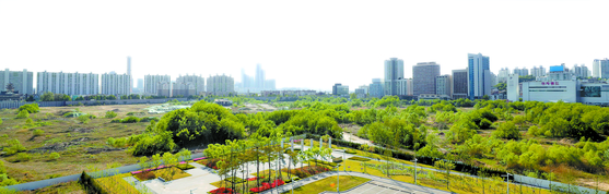 정부가 8000가구의 주택공급 계획을 발표한 서울 용산역 정비창 부지의 모습. 코레일과 SH공사가 시행사로 참여해 절반은 공공주택, 나머지 절반은 민간 아파트로 공급할 계획이다. 이 중 공공 임대주택 물량은 2000가구 이상이다. [연합뉴스]
