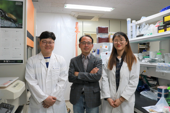 세종대 진중현 교수(가운데) 연구팀 모습