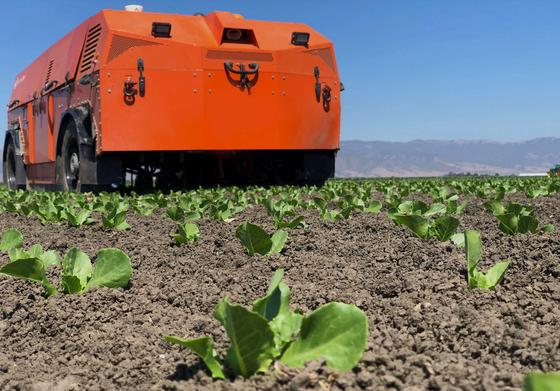 농장에서 제초 작업을 하는 농업 로봇 '타이탄'. [사진 팜와이즈]