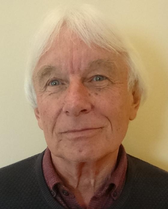 콜린 하인스는 영국 그린뉴딜그룹 공동 창설자다.