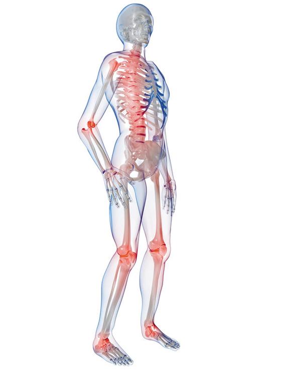 생애주기별 뼈 건강관리법