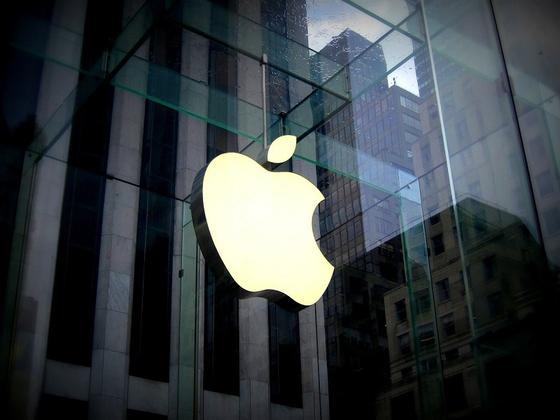 사진 애플