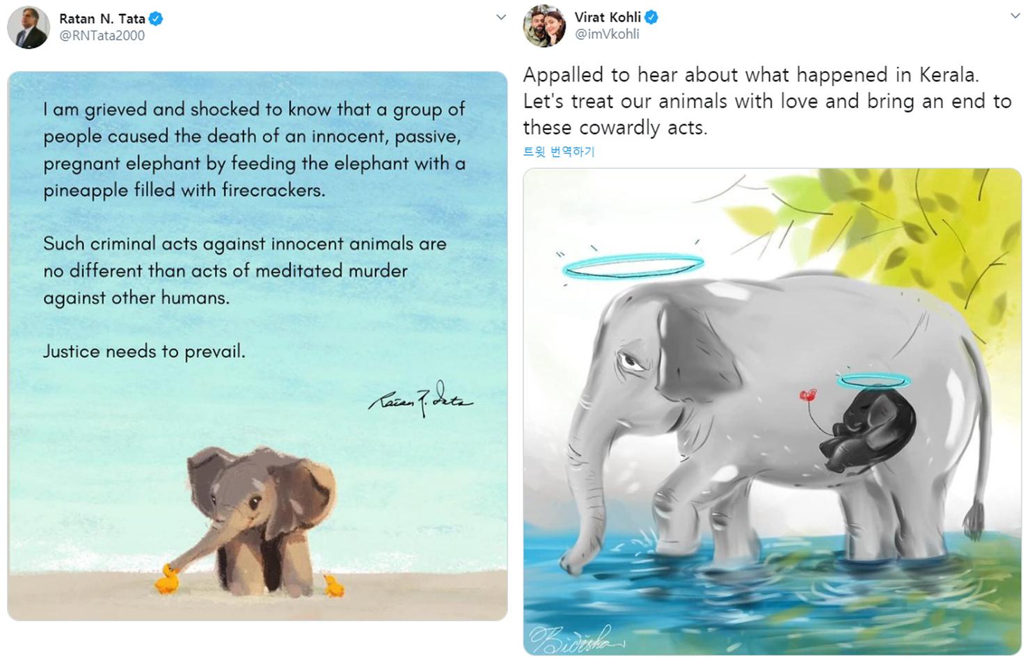 라탄 나발 타타 타타그룹 회장(왼쪽)과 인도 크리켓 스타 비라트 콜리의 트위터