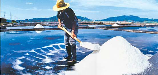 바람과 기온에 따라 소금의 맛과 질이 좌우되고 한국의 천일염은 무기질과 미네랄 함량이 풍부해서 우수한 소금으로 평가받고 있다. [사진 신안군]