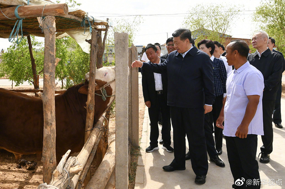 지난 8일 닝샤위구르족자치구 시찰에 나선 시진핑 중국 국가주석이 유엔으로부터 인류가 생존하기에 부적합한 곳이라는 평가를 받은 빈곤 지역 시하이구(西海固) 지구를 찾았다. [중국 신화망 캡처]