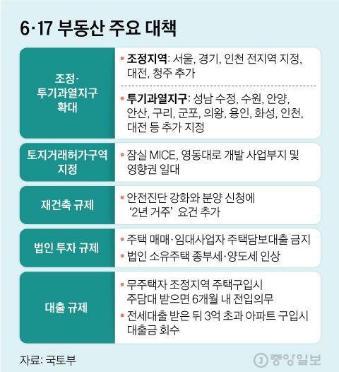 6·17 부동산 주요 대책. 그래픽=김현서 kim.hyeonseo12@joongang.co.kr