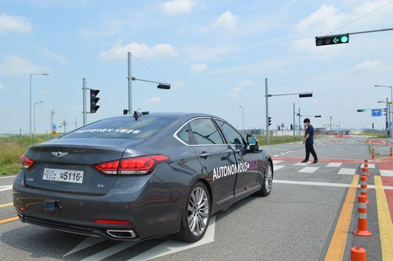 지난 19일 경기도 케이시티에서 빨간 신호등이 켜진 횡단보도에 사람이 나타나자, 운전자 개입없이 자율주행차가 속도를 감속해 멈춰섰다. 염지현기자.