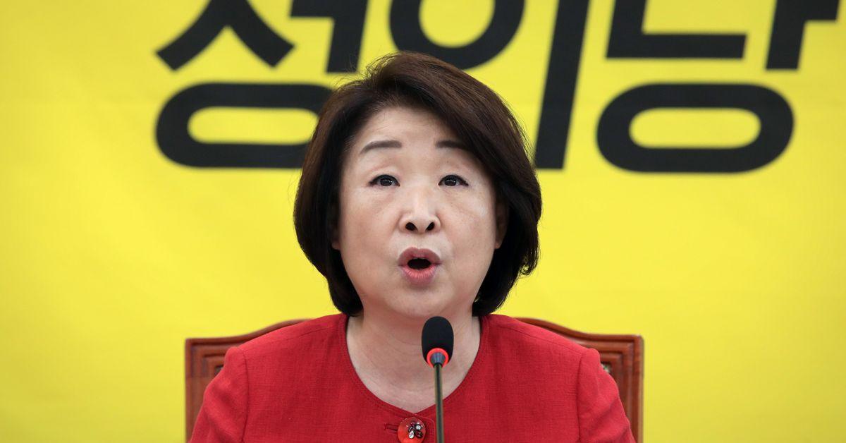 심상정 정의당 대표가 22일 오전 서울 여의도 국회에서 열린 상무위원회에서 발언하고 있다. 연합뉴스