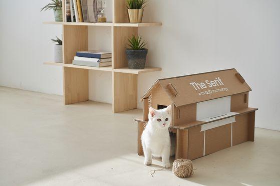 에코 패키지로 반려동물을 위한 집을 만든 예. [사진 삼성전자]