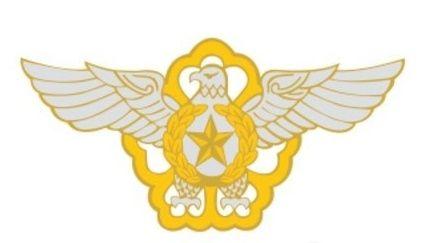 공군 마크. 공군 인터넷 홈페이지 캡처