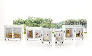 붐펫은 반려동물 전용 가전제품을 출시하며 고객에게 호평을 얻고 있다.
