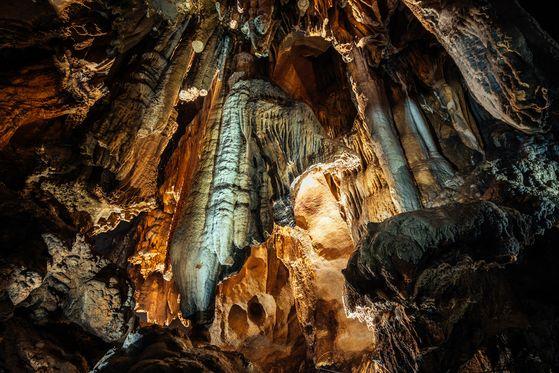 충북 단양 고수동굴에 있는 사자바위. [사진 단양군]