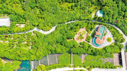 축구장(7140㎡) 2847개 크기의 산림에 상록활엽수와 희귀 난대식물 등 770종이 자생하는 완도수목원 전경. 프리랜서 장정필