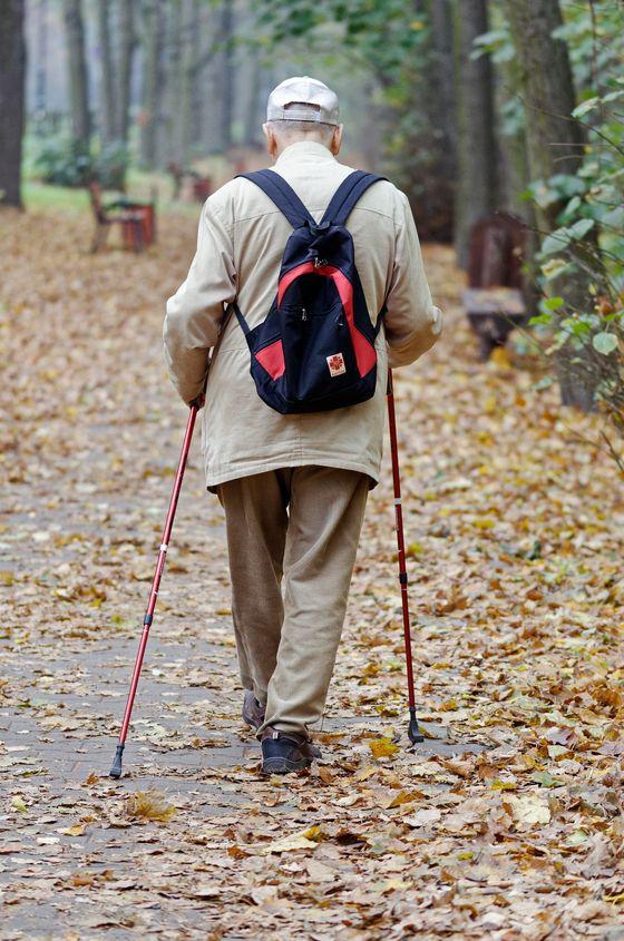 지팡이는 높은 곳을 오를 때만 필요한 것이 아니라 걸으면서도 활용하면 무릎이 보호되며, 하나를 짚는 것보다 두 개를 짚고 걸으면 무릎이 더 보호되고 균형이 잡힌다 했다. [사진 Pixabay]