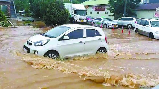 강릉에 폭우 ... 동해안 오늘 최고 300㎜