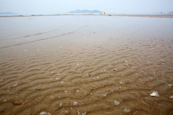 안면도 맨 남쪽 모서리에 들어 앉은 바람아래 해수욕장. 드넓은 모래사장이 펼쳐져 있다. 손민호 기자