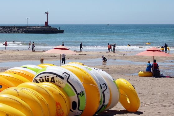 1일 제주시 이호해수욕장을 찾은 피서객들이 해수욕을 즐기고 있다. 뉴시스