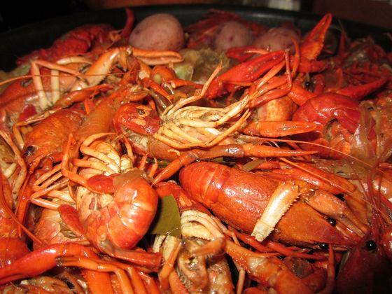 미국 남부에서 즐겨 먹는 크로피시 보일(Crawfish Boil). pixabay