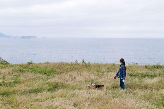 반려견과 함께 통영 매물도를 산책하는 여행자의 모습. 섬은 청정 자연을 누리기 좋은 휴양지인 동시에 걷기 좋은 장소다. 시원한 바닷바람을 맞으며 걷다 보면 더위도 사라진다. [사진 한국관광공사]