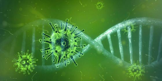 바이러스 코로나 유전자 이미지
