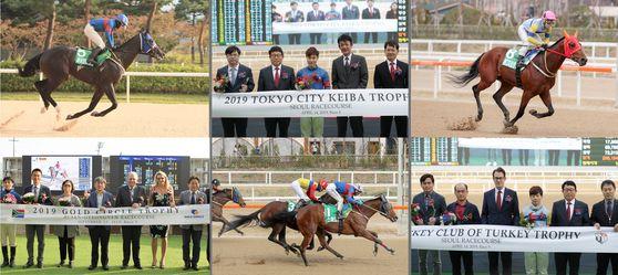 2019년 서울경마공원에 열렸던 일본, 남아공, 터키 국제교류경주 결승선과 시상식.